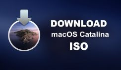 Download macOS Catalina ISO