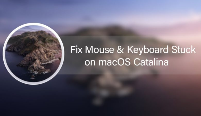 Fix Mouse & Keyboard Stuck on macOS Catalina