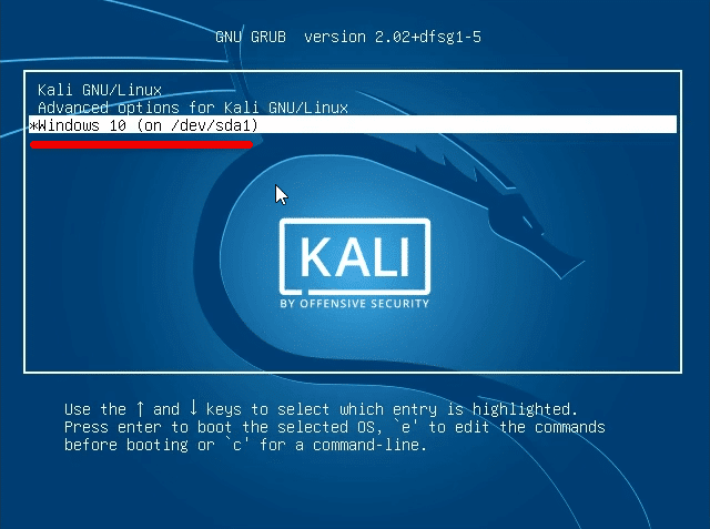 Select Kali Linux or Windows