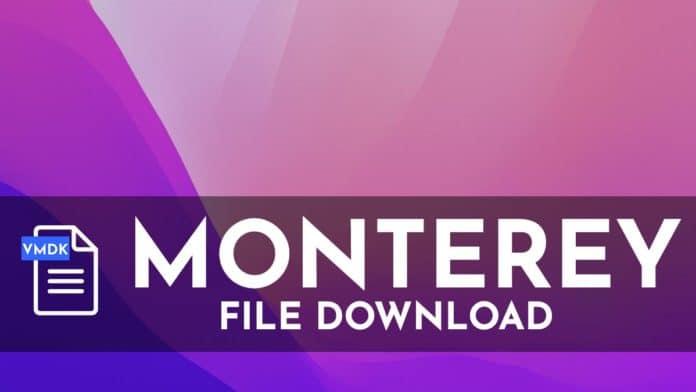 macOS Monterey VMDK Download